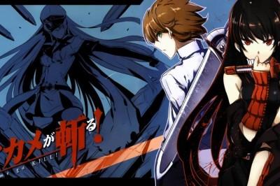 Manga Tavsiyeleri #10 (Akame ga Kill!)